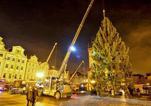 Staroměstské náměstí zdobí vánoční strom. Přes noc jej dělníci usadili do země, kde vydrží téměř měsíc a půl.