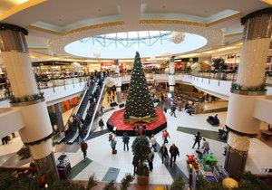 Nákupní horečka před Vánoci vrcholí