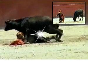 Býk znásilnil trpasličí toreadorku v koridě.