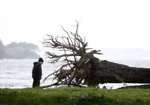 Španělsko i Francii trápí silné bouřky. Muž zemřel při odstraňování stromu