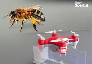 Před nedostatkem včel mají lidstvo zachránit opylovací drony..
