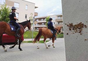 Po koních zbývají na ulici koblihy.