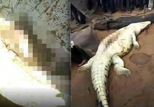 Vesničané našli uvnitř krokodýla ostatky pohřešovaného dítěte (†8).