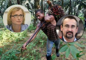 Zprávu europoslankyně Konečné (KSČM) o palmovém oleji podpořilo 640 europoslanců. Mezi nimi i Pavel Poc (ČSSD)