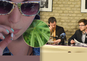 Pirátská strana si slibuje od legalizace marihuany například více peněz do státní kasy.