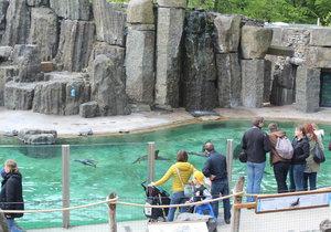 V zoologické zahradě se můžete těšit na nejrůznější zvířata i připojení k wi-fi.