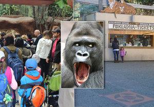 Speciální víkendová akce Zoo Praha bude dráždit smysly návštěvníků (ilustrační foto).