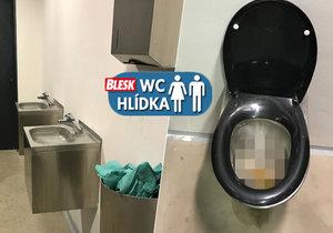 Návštěva toalet v parku Grébovka je jen pro osoby se silným žaludkem. Voda z umyvadel neodtéká, záchody nesplachují a vrší se v nich výkaly a toaletní papír.