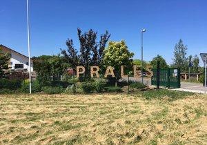 V Praze vyrostl prales pro veřejnost. Můžete se tu vzdělávat i relaxovat