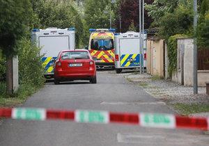 Za vraždu matky si student z Dobřichovic odpyká 8 let vězení.
