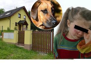 Ridgeback zohavil holčičku (3): Ukousl jí půl tváře!