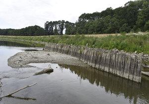 Česko bojuje se suchem. (Ilustrační foto)