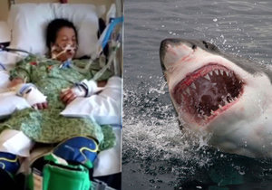Žena bojovala se žralokem.