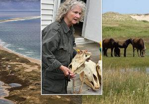 Zoe žije už 40 let na opuštěném ostrově. Jejími jedinými společníky jsou divocí koně.
