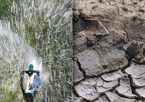 Sucho trápí osm z deseti Čechů. Kvůli drahé vodě se už teď častěji sprchují