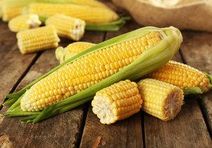 Na cukrové kukuřici si pochutnáte v syrovém stavu, existuje ale i spousta způsobů, jak ji upravit v kuchyni