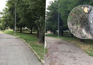 Porovnání před – po. Lidé mohou po Jablonecké ulici opět bez problémů procházet.