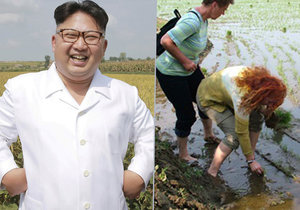 Zneužívá Kim turisty na otrocké práce?