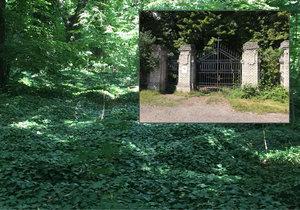Dočká se bohnický hřbitov konečně důstojné opravy?