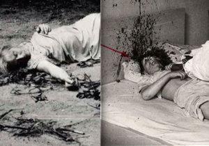 Kdo vyvraždil rodinu špičkového českého vědce? Synovi rozsekli hlavu sekerou, manželku vyhodili z okna