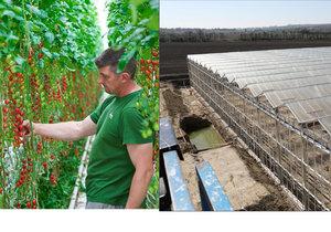 Na Břeclavsku vyrostl superskleník větší než Václavák, pěstovat se v něm budou rajčata.