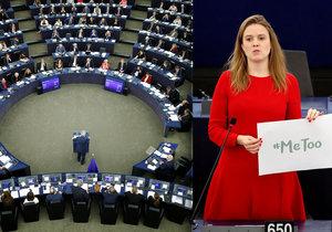 Europoslanci diskutovali o sexuálním obtěžování. Terry Reintkeová.