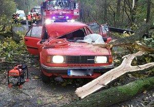 Škody po vichřici Herwart pojišťovny stály 1,5 miliardy korun.
