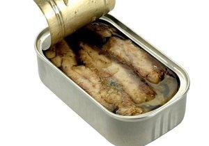 Test Blesku – sardinky v oleji
