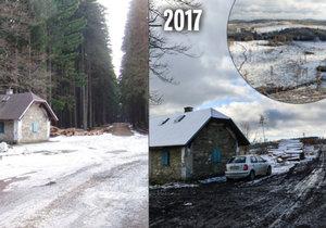 Největší lesní kalamita v dějinách Česka: Jeseníky přichází o lesy.