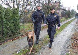 Policejní hlídky, psovodi a jezdci na koních v úterý zkontrolovali stovku chat v okolí Ivančic.