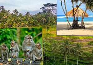 Bali je překrásné a nespoutané.