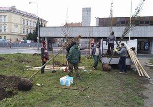 Nové stromy se objevily také u stanice metra Nádraží Holešovice.