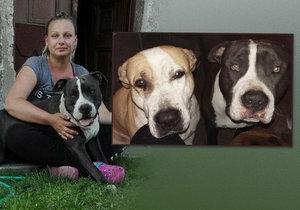 Majitelka ztracených psů z Volárny je na dně: Tuším, že je má někdo doma