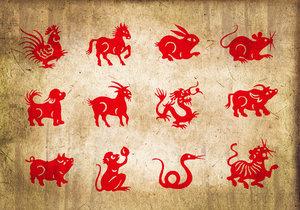 Horoskop na další týden: Krysy čekají hádky s partnerem, Hadi budou hýřit nápaditostí