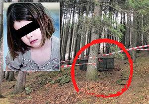 V obci Krásná na Frýdecko-Místecku spadla holčička (4) při hře na schovávanou do šest metrů hluboké studny.