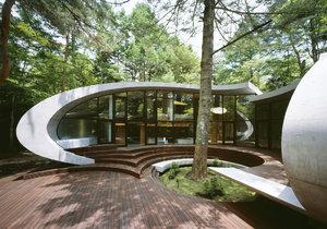 Rodinný dům v lesích vypadá jako betonová mušle