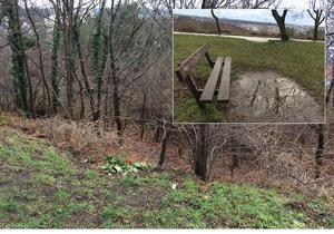 Park Dlážděnka v Kobylisích se ještě v průběhu letošního roku dočká razantní revitalizace.