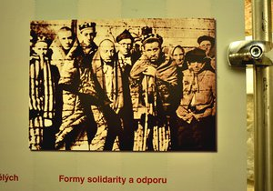 """Výstava """"Místa utrpení, smrti a hrdinství"""" odhaluje hrůzy holokaustu"""