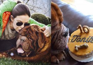 Anna K. oslavila se svým psem Tondou jeho 10. narozeniny.