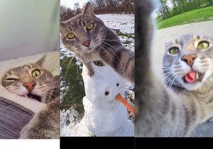 Kočka Manny si ráda fotí selfie.