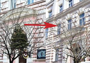 Vánoční stromek v koruně stromu už neobjevíte. Technická správa komunikací se o něj postarala.