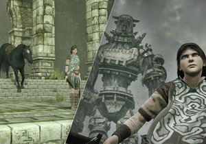 Shadow of the Colossus pro PlayStation 4 je umělecké dílo.