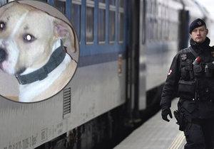 Pes napadl dívku ve vlaku. Jeho majitelé ji nechali ležet v krvi.