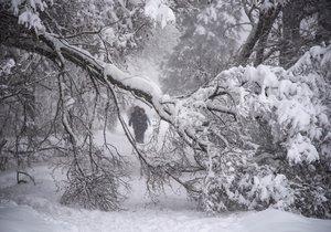 Moskvu sužuje husté sněžení a silný vítr, hlášena je jedna oběť.