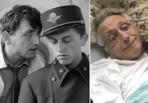 Dojemné vzkazy Menzelovi do nemocnice! Neckář a spol. gratulují režisérovi k narozeninám.