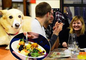 Vegani se setkávají každý měsíc na večeři.