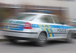 Seniora (79), který utekl z nemocnice, se ujali policisté. Ilustrační foto