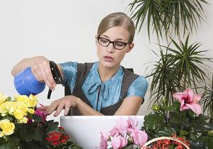 Jaro se blíží, ideální čas přesadit pokojové květiny