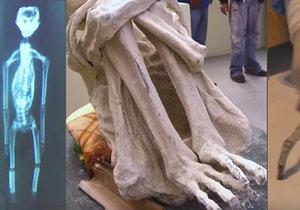 Na skutečný původ mumií si budeme muset ještě počkat