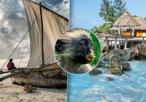 Bělostné pláže, azurově modré moře, celoroční teploty kolem třicítky, kvalitní hotely, okouzlující příroda. To jsou jen některá lákadla Zanzibaru.